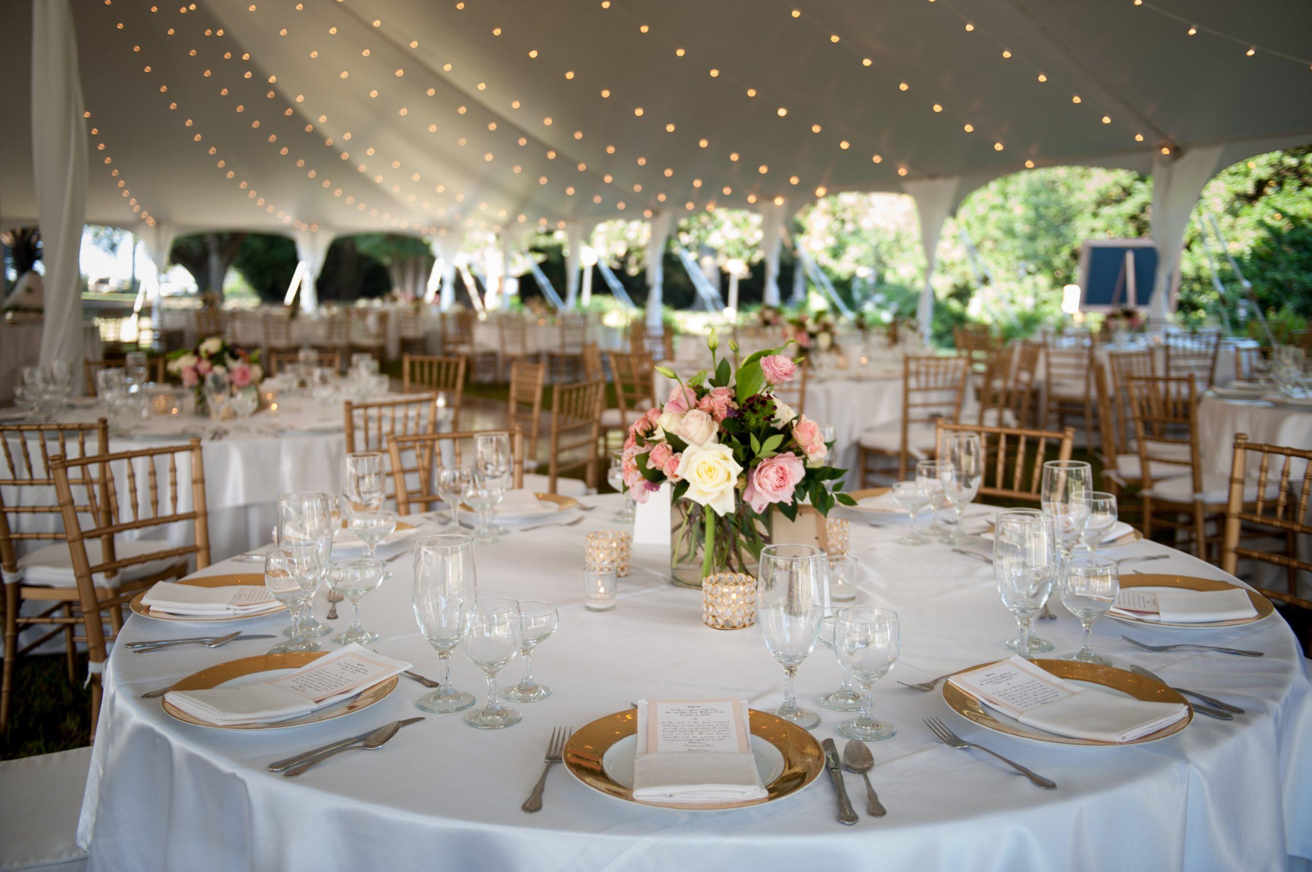 Blue Springs Under Tent & Blue Springs Wedding u2013 Rental Depot